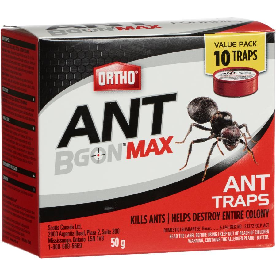 Ortho 10 Pack Ant BGon Traps