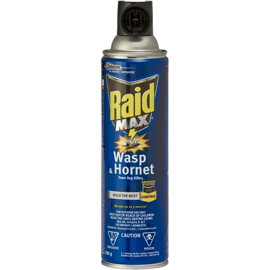 Raid 500g Wasp and Hornet Killer Spray