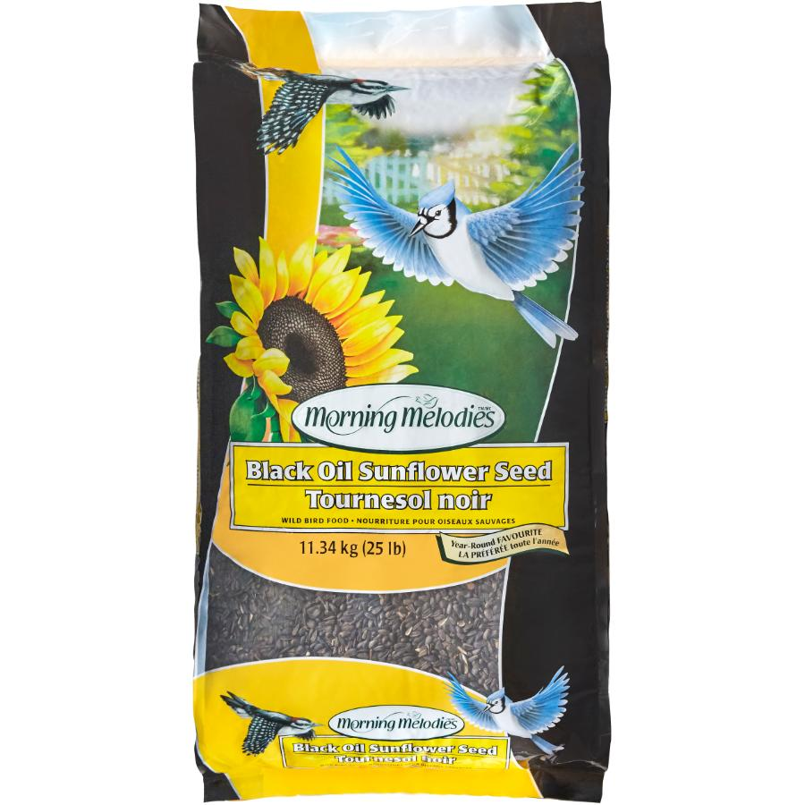 Morning Melodies 11.34kg Black Oil Sunflower Bird Seed